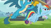 Rainbow and Gallus carrying plank of wood S8E2
