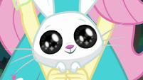 Angel Bunny with huge, adorable eyes CYOE4a