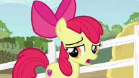 "Apple Bloom ""I do have a family tradition"" S6E14"