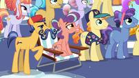 Mustache Crystal Pony --No Crystalling, huh--- S6E2