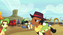 Ponies at the Appleloosa rodeo S5E6