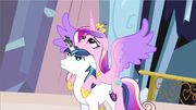 Princess Cadence wings spread out S3E2.png