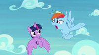 """Rainbow """"how dangerous they are"""" S8E20"""