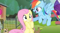 Rainbow 'Spit it out!' S4E14