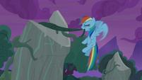 Rainbow Dash pulling on old vines S7E25