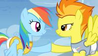 Rainbow and Spitfire hoof-bump S4E24
