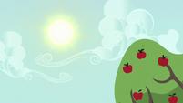 Sun shining over Sweet Apple Acres S6E10