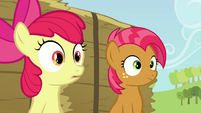 Babs and Apple Bloom hearing Applejack S3E08