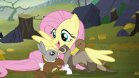 """Fluttershy """"how do you feel about book clubs?"""" S5E23"""