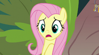 Fluttershy gasping with shock S9E18