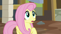 Fluttershy looking very surprised S7E5