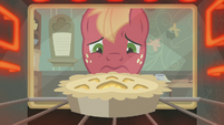 Pie baking in Big McIntosh's oven S8E10