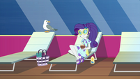 Rarity notices seagull next to her EGSB
