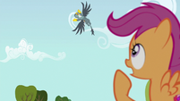"Scootaloo ""you didn't let me finish!"" S6E19"