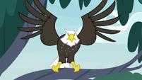 Eagle menacingly spreads its wings S9E18