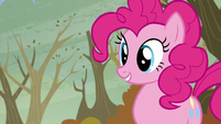 """Pinkie """"Which one?"""" S5E5"""