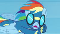 "Rainbow Dash ""my name's not Crash!"" S6E7"