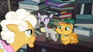 S04E09 Goldie patrzy na swoje koty