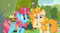 S07E13 Pear Butter z tęsknotą patrzy na Bright Maca uprowadzonego przez matkę