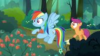 Scootaloo frantically alerts Rainbow Dash S7E16