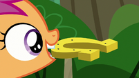 Scootaloo picks up a gold horseshoe S7E21