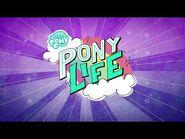 -Hungarian- MLP- Pony Life - theme song