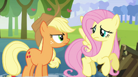 Applejack and Fluttershy -what's he going on about now-- S03E10