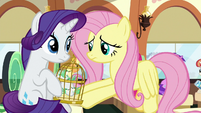 Fluttershy gives bird cage to Rarity S9E26