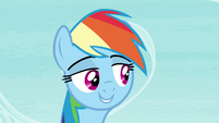 "Rainbow ""not everypony gets all freaked out about tests"" S4E21"