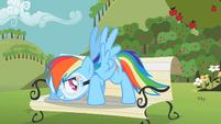 "Rainbow Dash ""You got it"" S2E03"