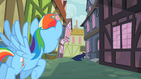 Rainbow Dash sees Mare Do Well running away S2E08