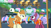 Zip-lining ponies at the gift shop S9E13
