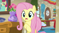 """Fluttershy """"don't you remember last time?"""" S6E11"""