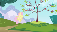 Fluttershy directing bird choir S1E01