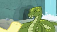 Antoine happily eating a snake treat S9E18