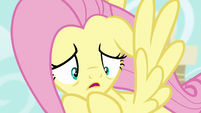 """Fluttershy """"excuse my language"""" S6E11"""