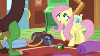 """Fluttershy """"it's an opportunity to expand"""" S6E17"""