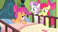 Scootaloo touches bow S4E17