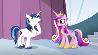 """Shining Armor """"all we need is"""" S6E1"""