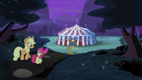 AJ and Apple Bloom walking back to Flim and Flam's tent S4E20