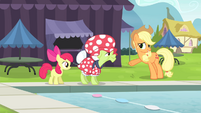 """Applejack """"The most important thing is"""" S4E20"""