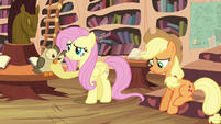Fluttershy -should have just pretended- S4E18