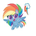 MLP Pony Life Rainbow Dash profile picture