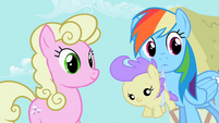 Rainbow Dash holding a foal S2E08