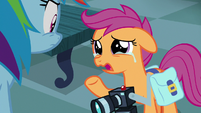 """Scootaloo """"hoping to learn more about you"""" S7E7"""