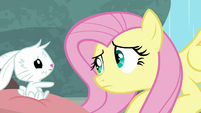 Fluttershy miming sympathy for Angel S9E18
