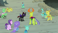 Ponies and changelings cheering for Pharynx S7E17