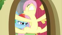 Rainbow Dash struggling Fluttershy door 2 S2E21