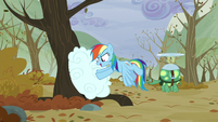 Rainbow pushing the clouds into a tree S5E5