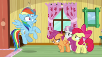 Rainbow shocked by Apple Bloom's news S9E12